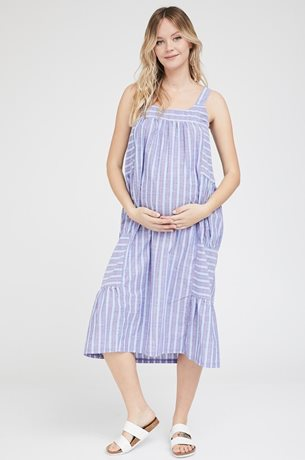 Picture of Rose Dress Blue Stripes